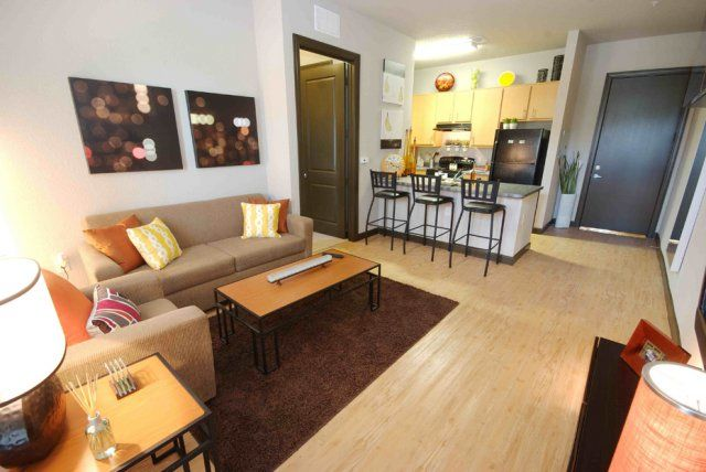 40 fifty lofts student apartments tampa fl near usf student rental