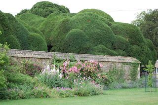 Cloud Pruning At Corsham Court Conifers Garden Cloud Pruning Garden Styles