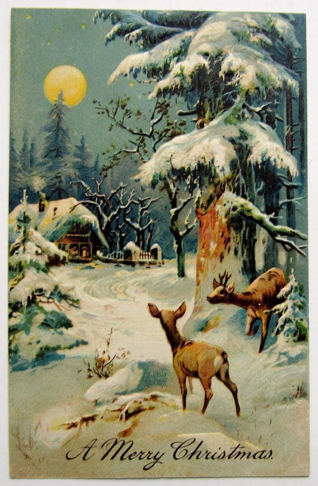луна зимой советские открытки необходимо учитывать только