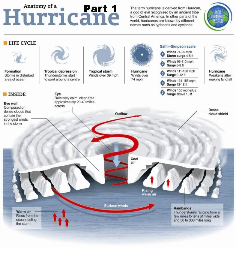 Anatomy Of Hurricane 1 Storiesfactsconcepts Pinterest