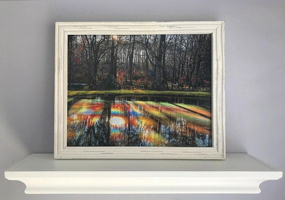 Trees Reflected, Rainbow Colors, Water Reflecting Trees, Fall Scenery, Nature, Landscape Photography, Unique Forest Image, Autumn Decor #fallscenery