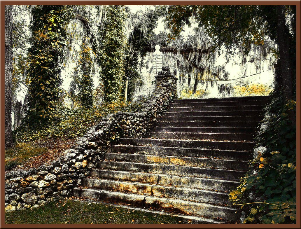 One Of The Staircases At Radium Springs In Albany Ga Now A Botanical Garden Betty Rehberg 39 S