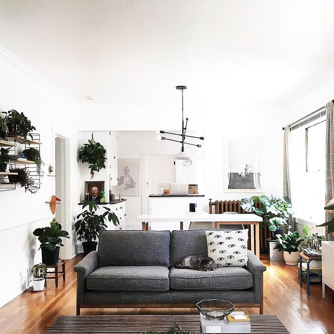 Staying home > going out. Especially if your living room looks like ...
