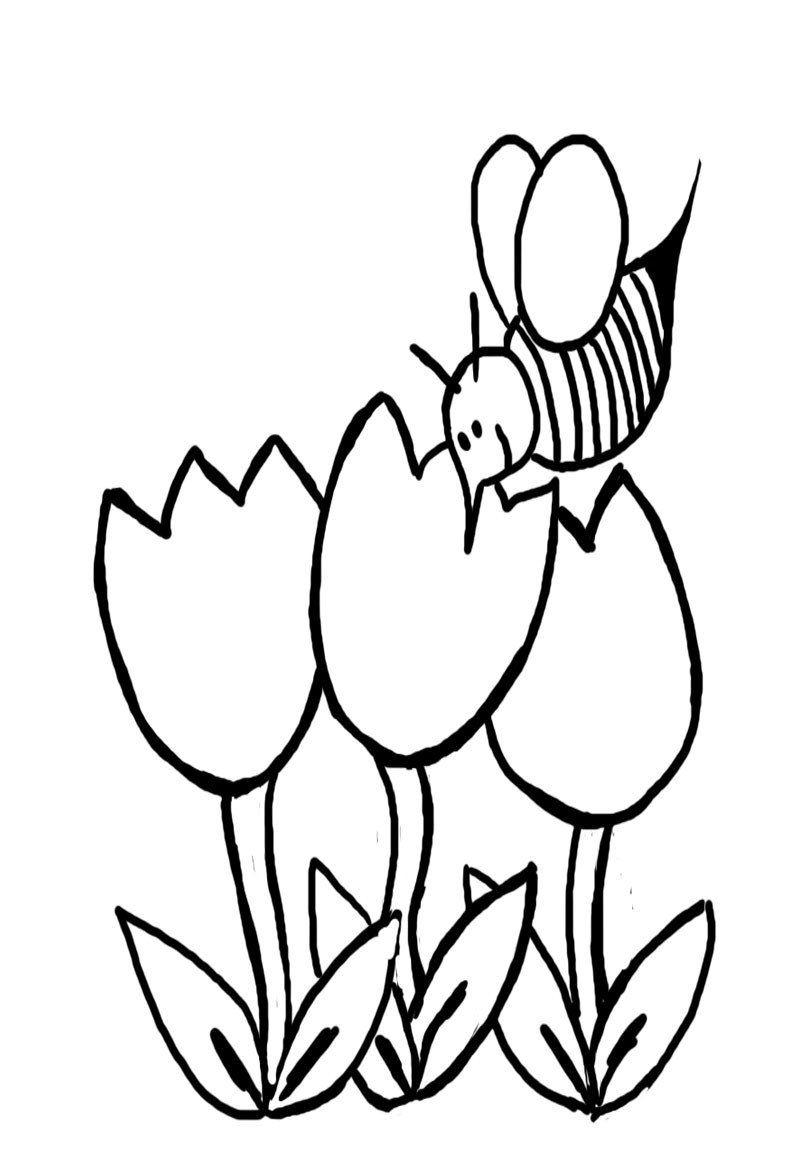 Easy Kid Coloring Page Easy Preschool Coloring Pages Spring 3670 Preschool Kindergarten Coloring Pages Free Halloween Coloring Pages Fall Coloring Pages