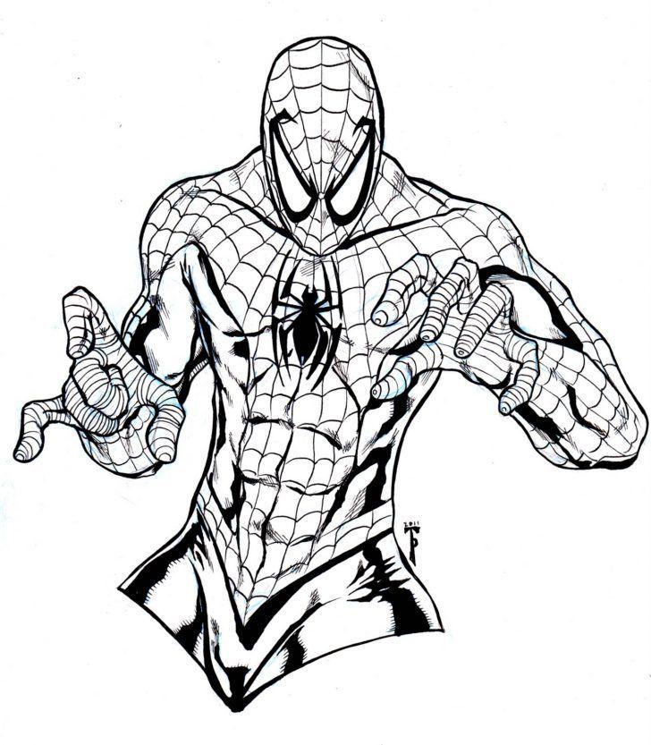 spiderman-free-coloring-pages   Colour me calm   Pinterest