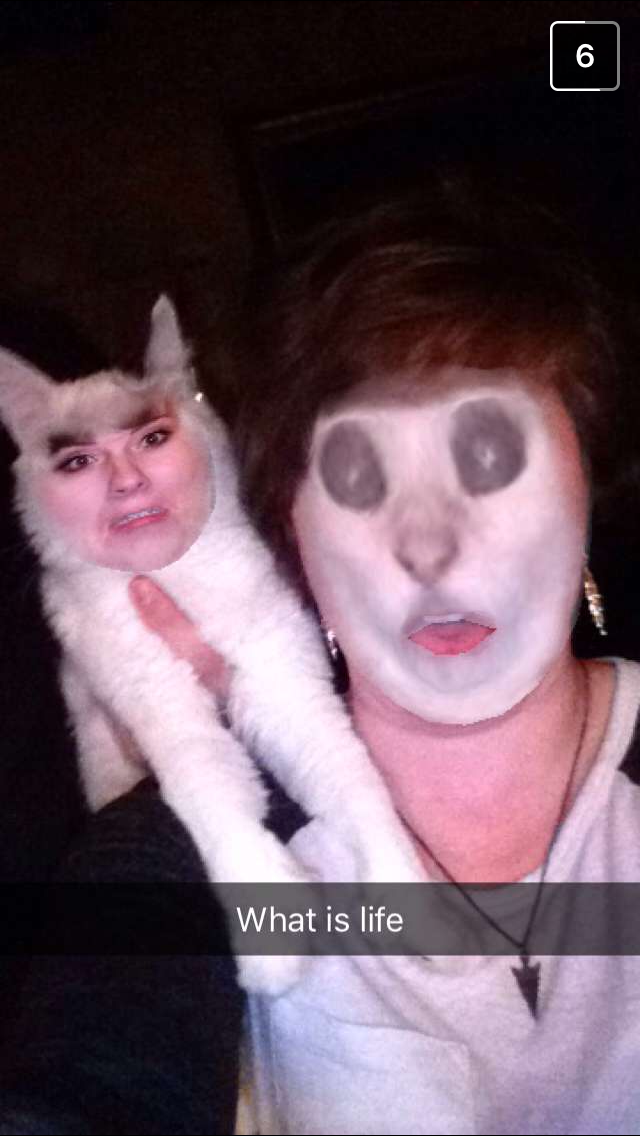 My girlfriend tried faceswapping with our cat