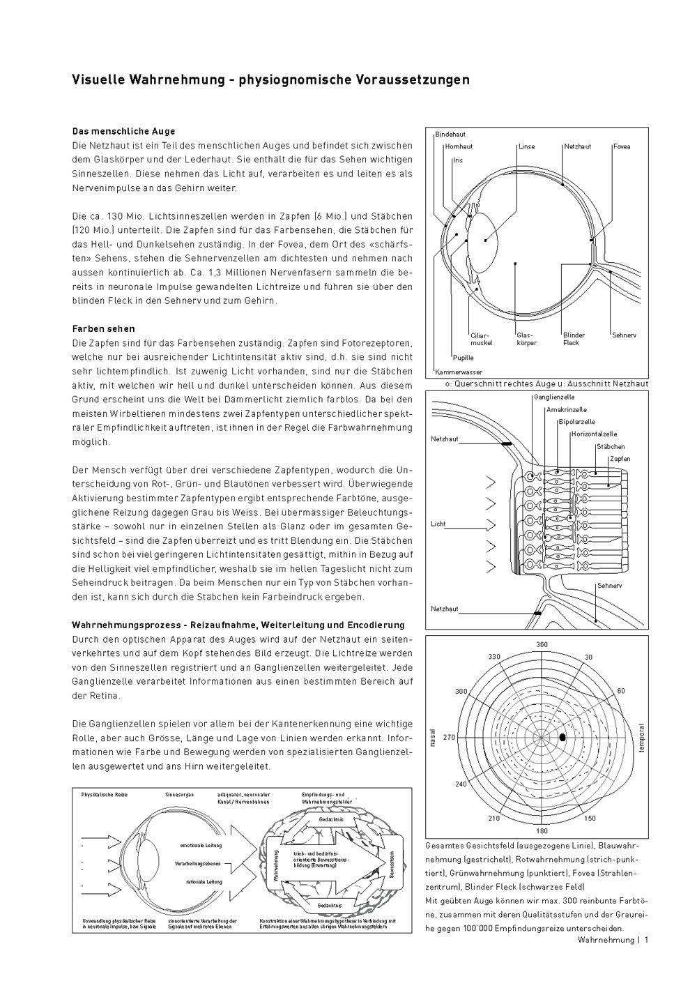 Neues Arbeitsblatt unter Wahrnehmung! #bildnerisches #gestalten ...