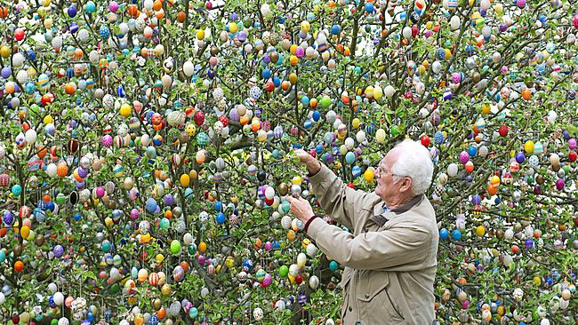 Volker Kraft fixes an egg at an apple tree decorated with about 10,000 painted Easter eggs in their garden in Saalfeld, central Germany, Wednesday, April 9, 2014. The Kraft family has decorated their tree for #Easter for more than 40 years. (AP Photo/Jens Meyer)