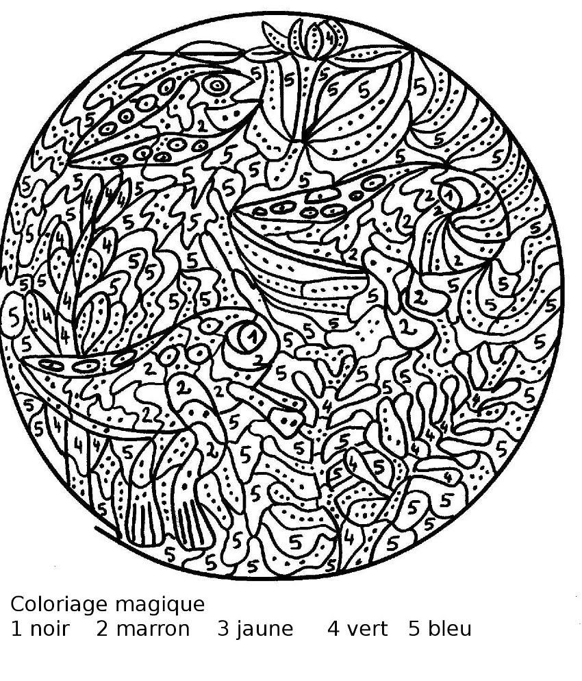 Coloriage Magique Difficile à colorier - Dessin à imprimer  Color