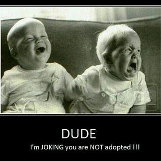 Aww poor little thing lol ... Uploaded with Pinterest Android app. Get it here: http://bit.ly/w38r4m