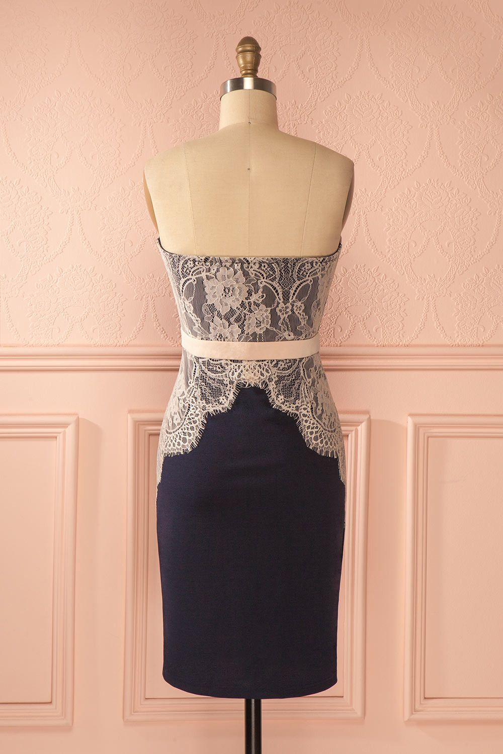 Jazzlyn - Navy blue and pink lace bustier dress