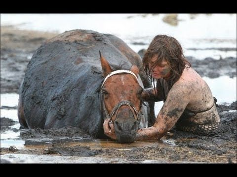 Girl Saves Horse from sinking - Beautiful Animals Compilation ...