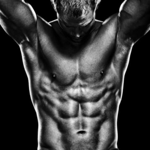 Free muscle building fat burning diet plan