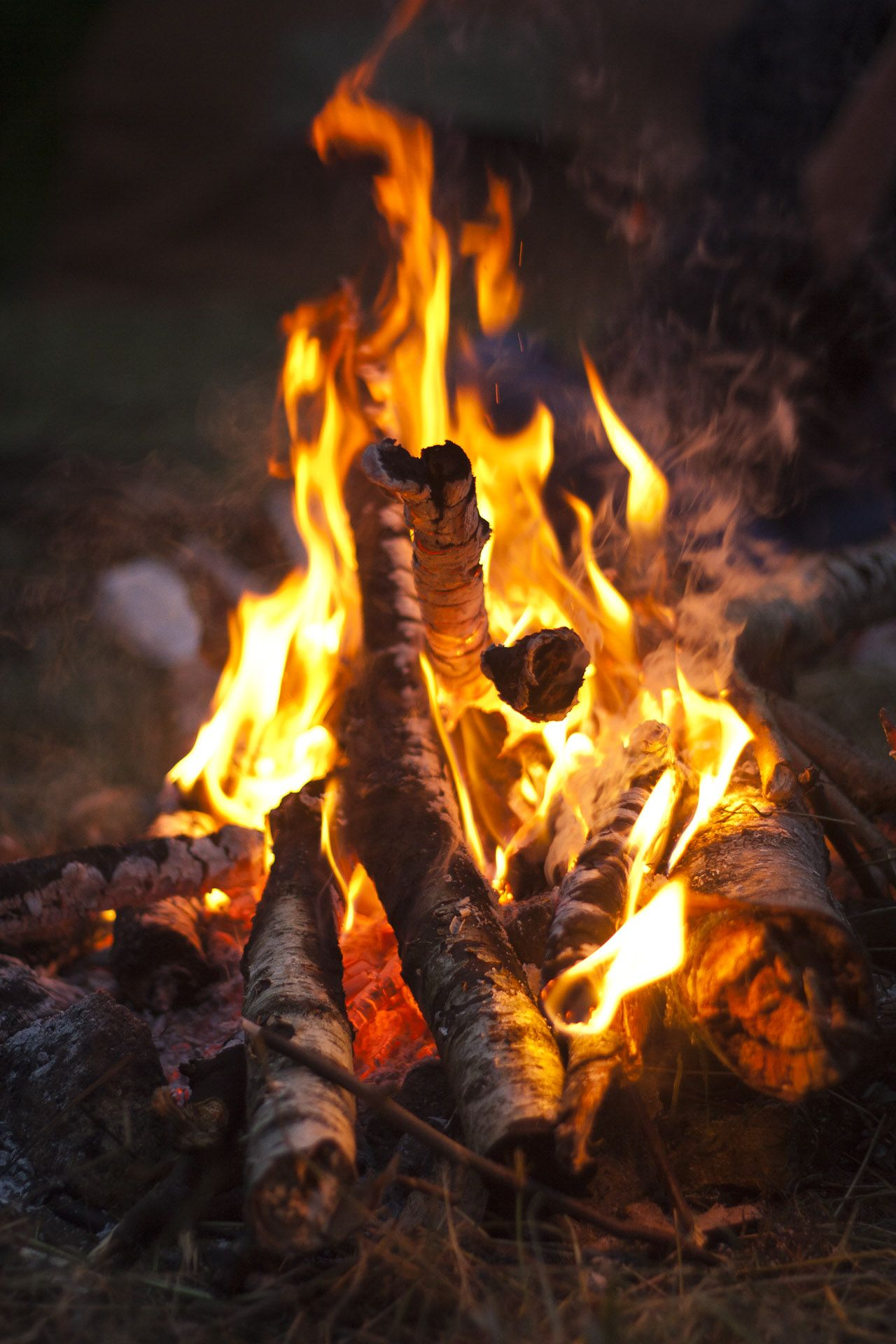 Love a good bonfire to sit by at night.  Peaceful moments....