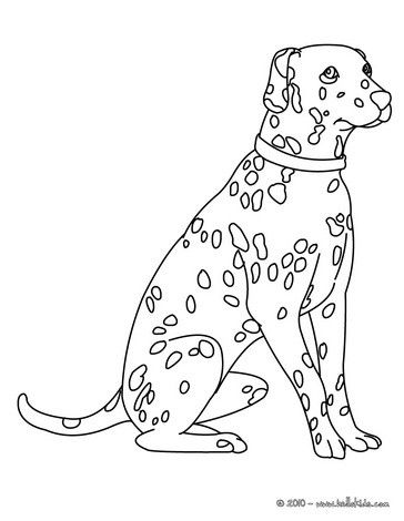 this dalmatian coloring page would make a cute present for your parents cute coloring page