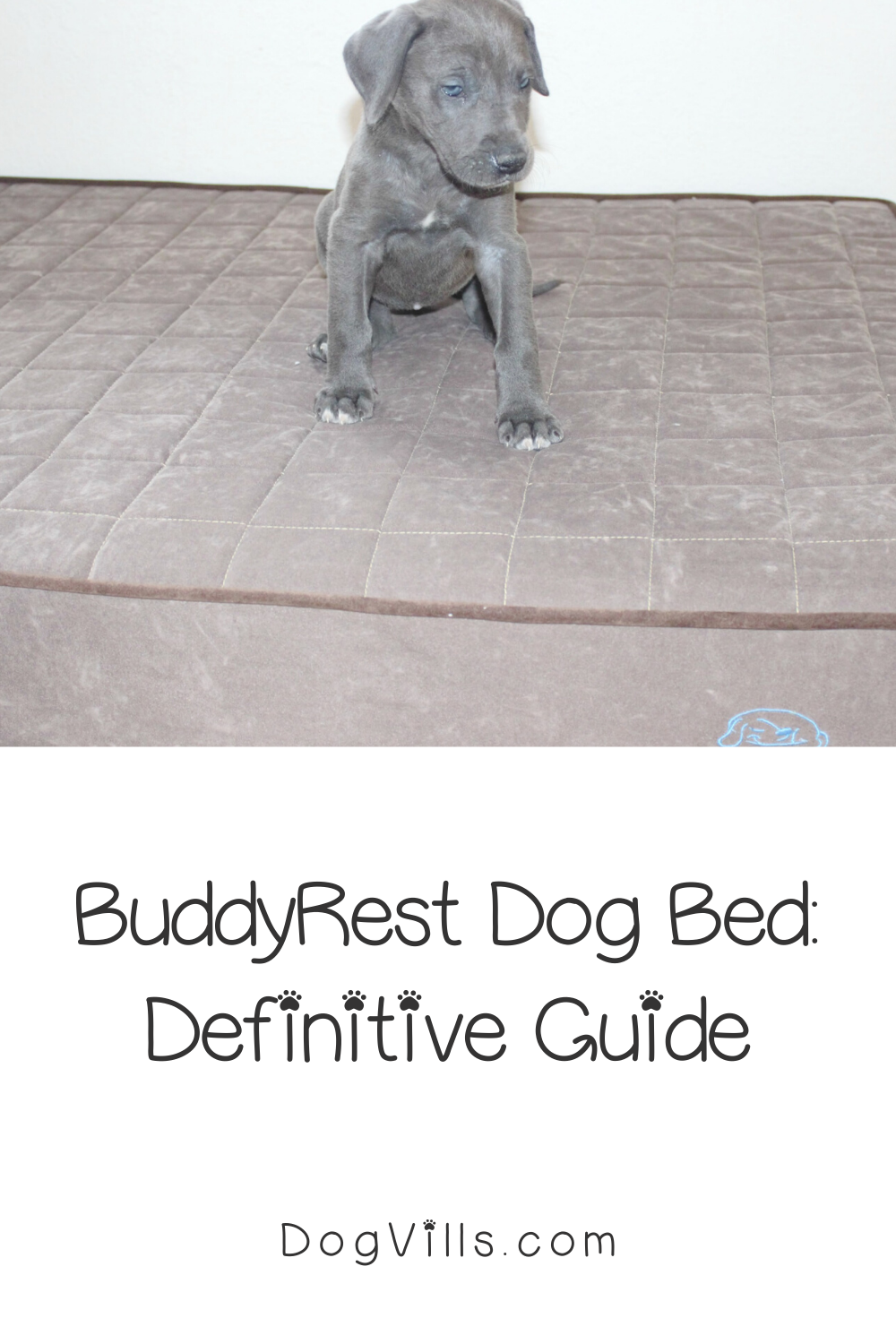 buddyrest reviews
