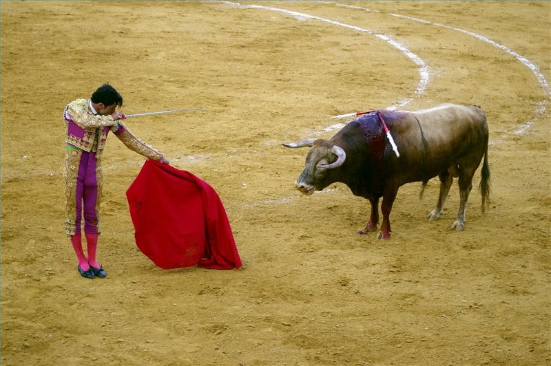 10 Facts About Clothing in Spain (With images) Animals