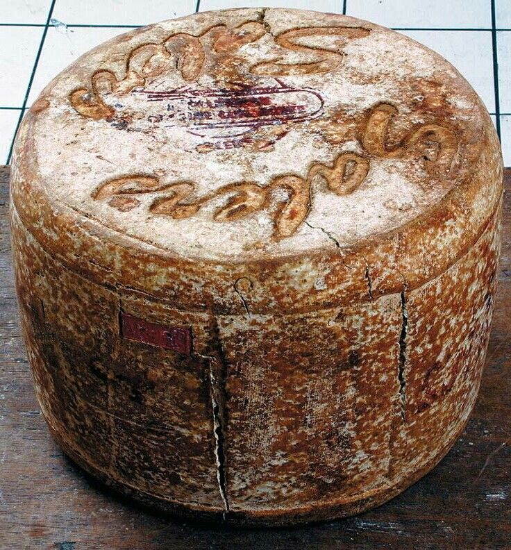 Salers. Een harde kaas van koeienmelk uit de Auvergne