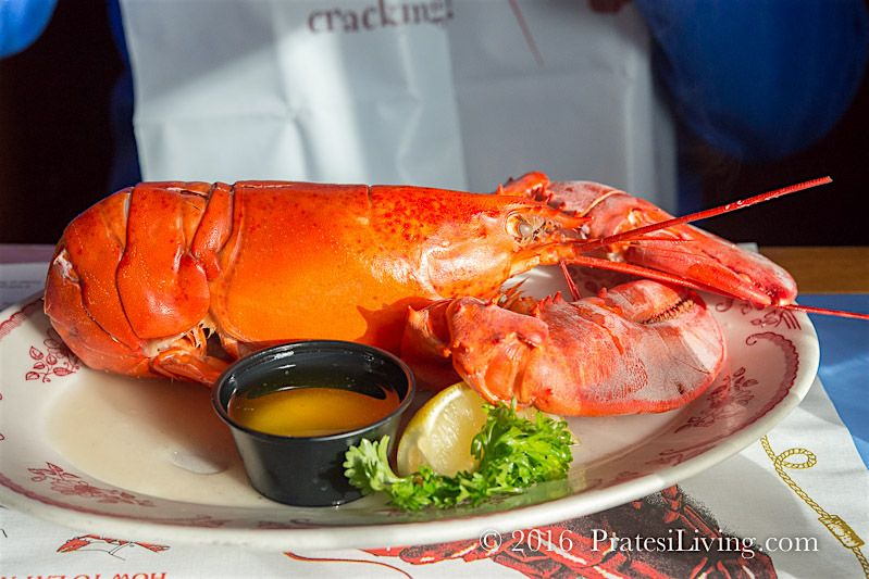 Steamed lobster with drawn butter is a must when in Maine / PratesiLiving.com