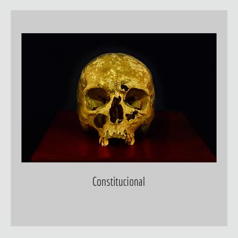 Constitucional.  YENY CASANUEVA Y ALEJANDRO GONZÁLEZ. PROYECTO PROCESUAL ART