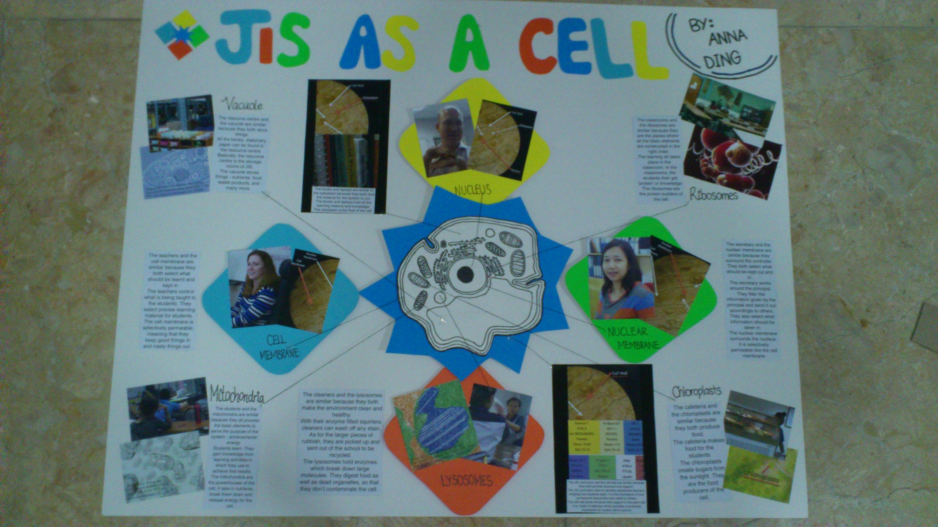 Cell Analogy Poster School And Cell Analogy Poster For Science