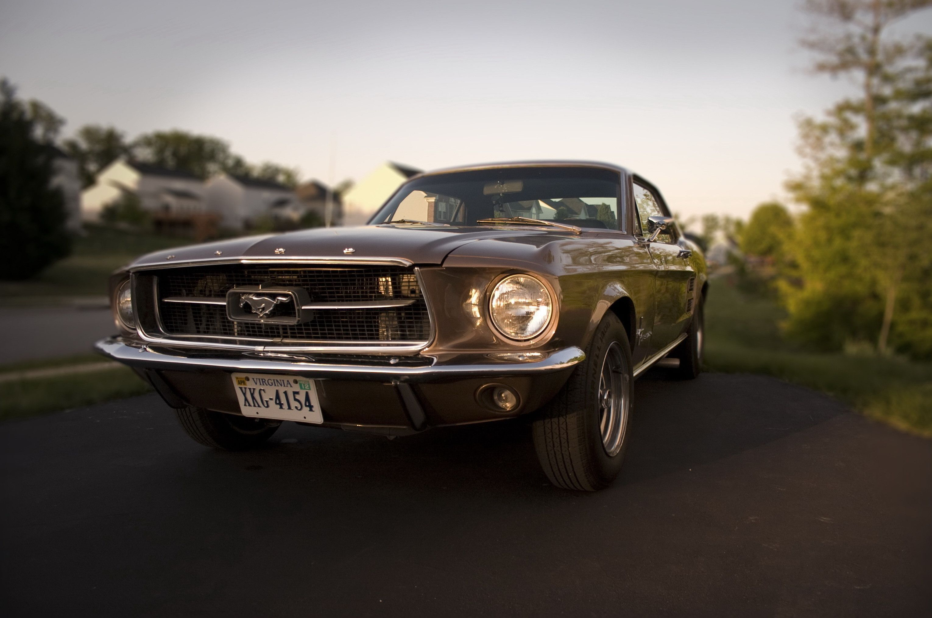 Wallpaper Ford Ford Mustang And Vehicles
