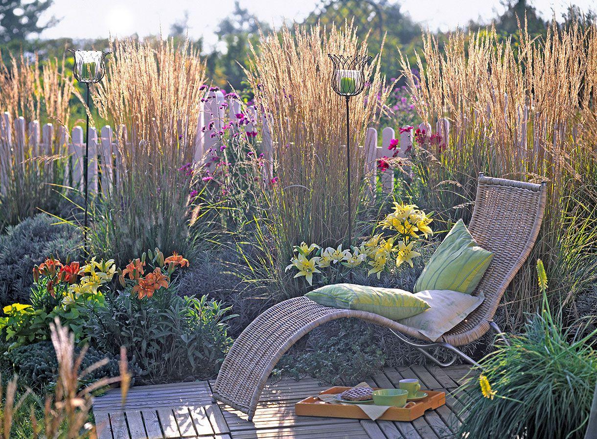 11 idées de brise-vue pour être tranquille au jardin | Edible garden ...