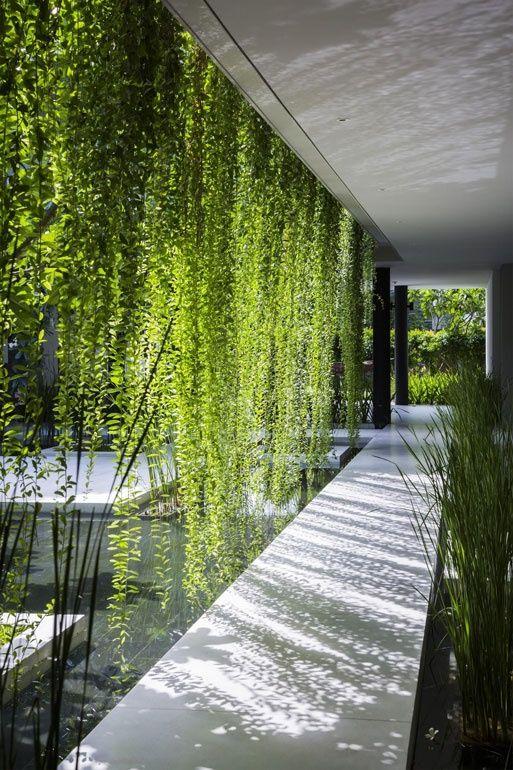 Interior Design Magazine House - Garden Pinterest Cortinas - plantas para jardin