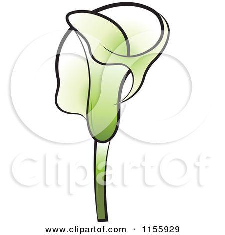 Http Error 403 Forbidden Calla Lily Calla Lily Flowers Free Vector Illustration