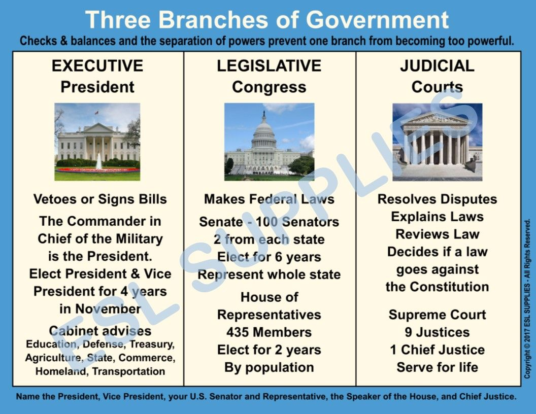 Worksheet Judicial Branch In A Flash Answers