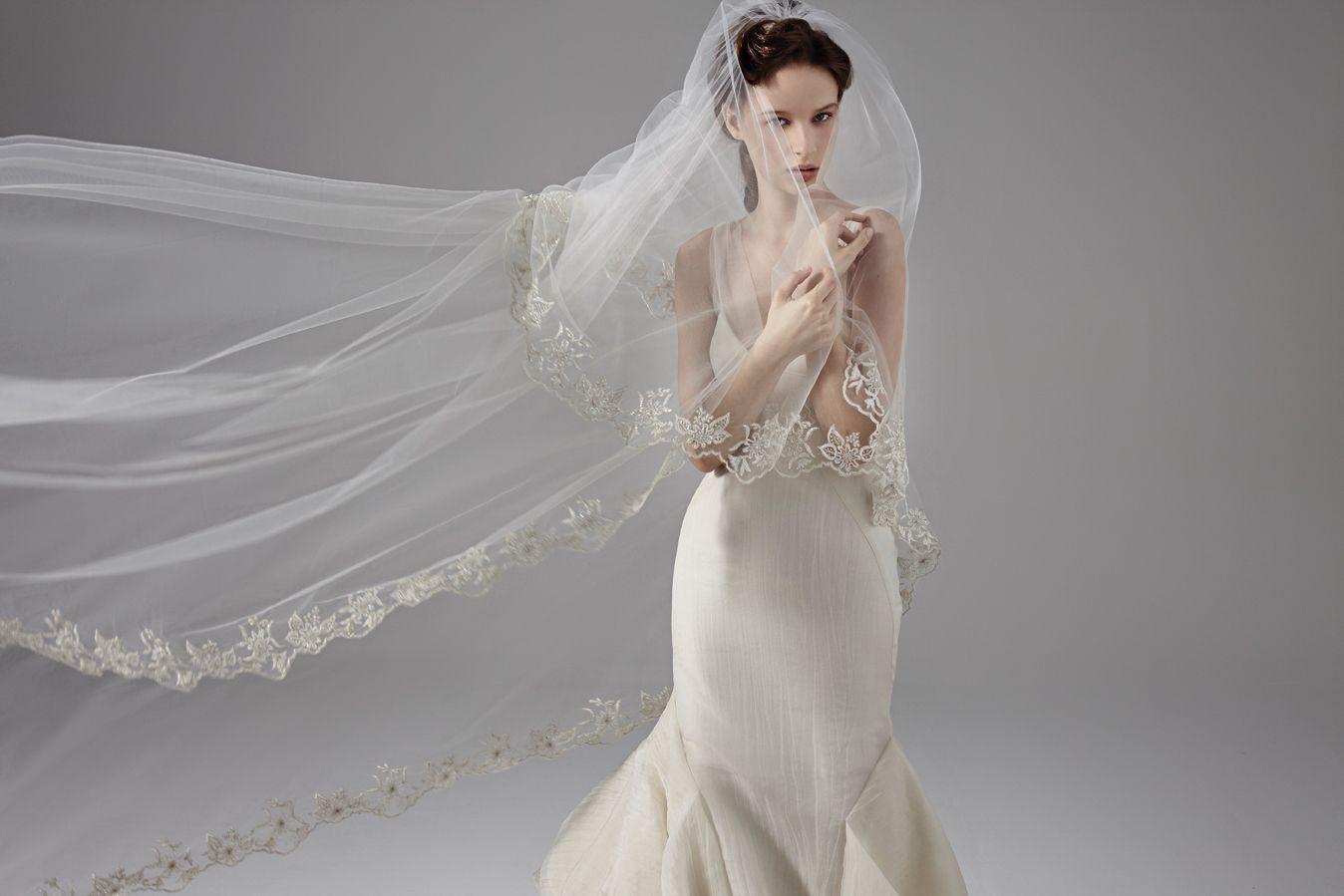 Elite wedding dresses  Peter Langner  V   Firenze  Veil   Veil Collection