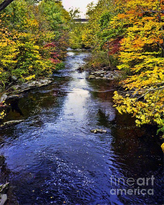 Lidias Hidden Creek Photograph  - Lidias Hidden Creek Fine Art Print  Lidia's Photography