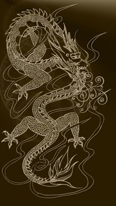 Chinese Dragon Iphone 5 Wallpaper Dragon Mobile Fire