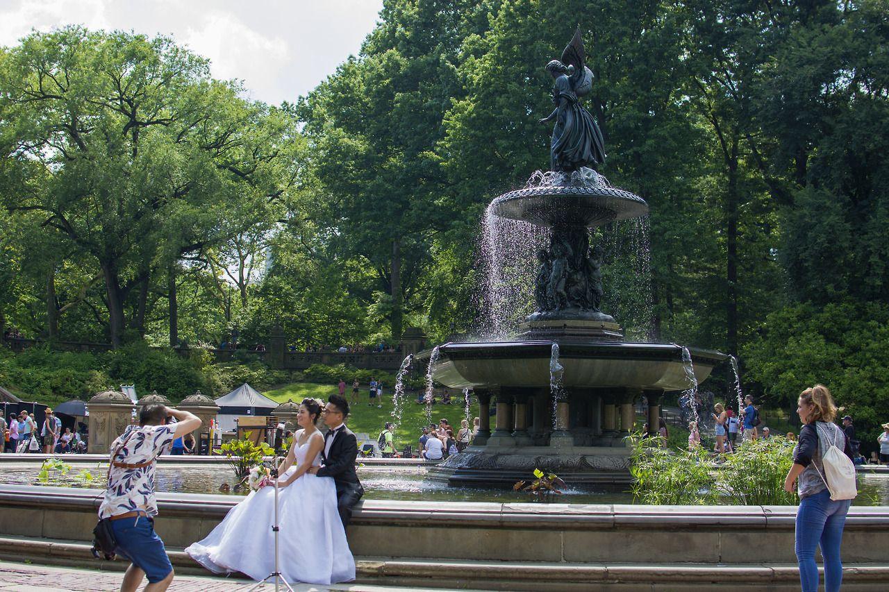Central park manhattan new york city central park