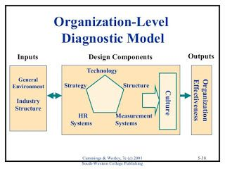 Human Resource Management International Organizational Models