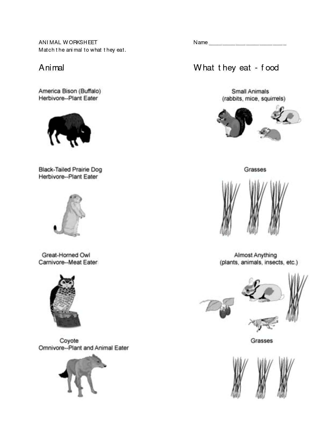 Worksheets For 1st Grade E Worksheets For 1st Grade