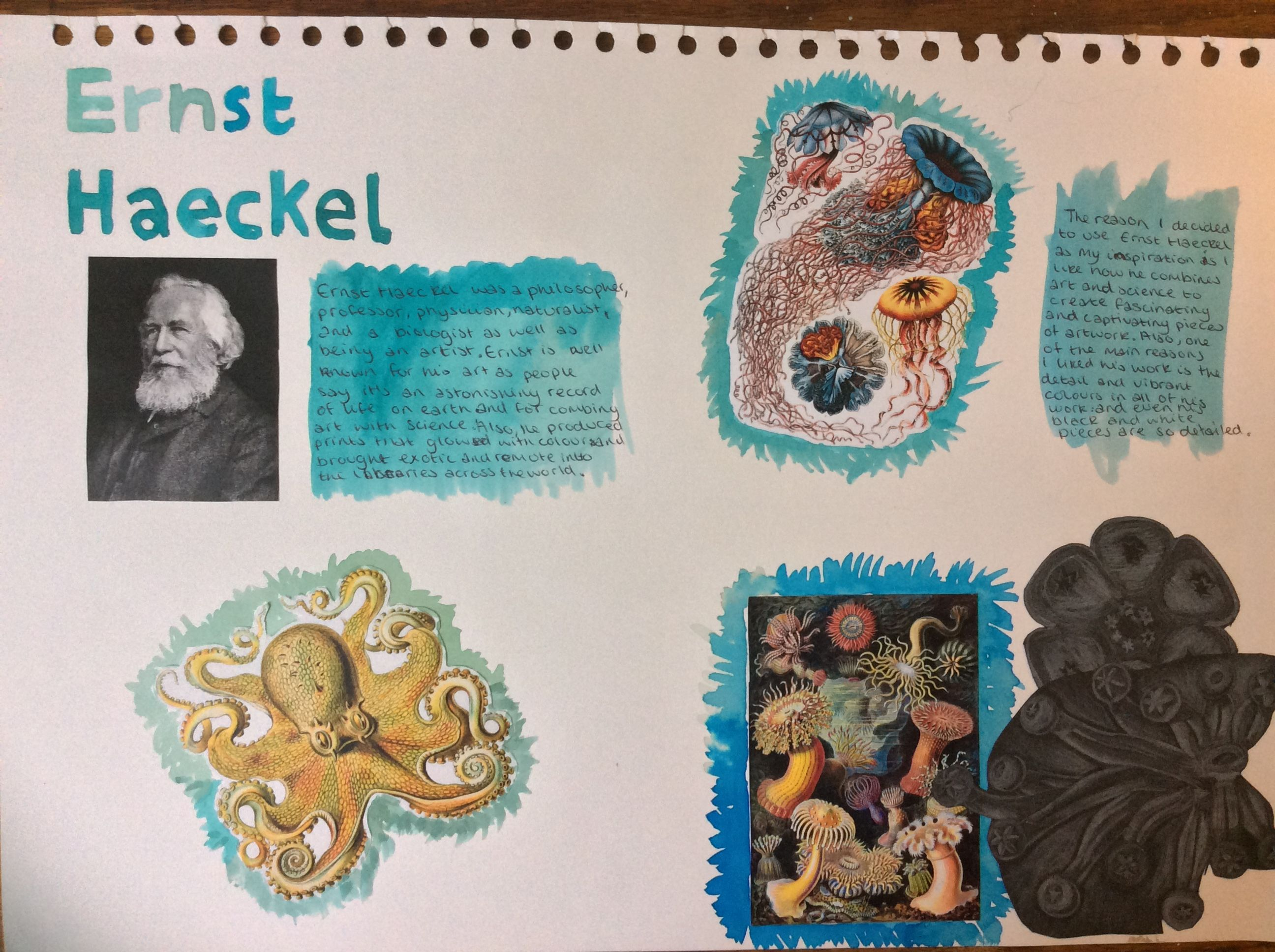 Gcse Art Natural World Ernst Haeckel Page