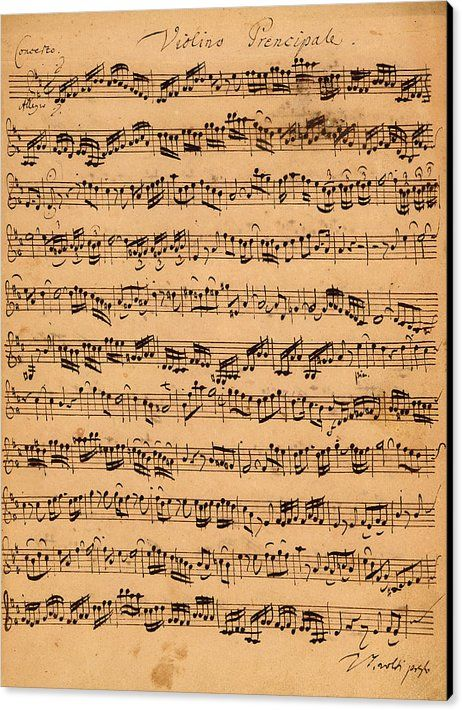 Music; Musician; Score; Composition; Composer; Classical Music; Baroque; Notes; Note; Notation; Handwritten; Manuscript; Handwriting; First Violin Canvas Print featuring the drawing The Brandenburger Concertos by Johann Sebastian Bach