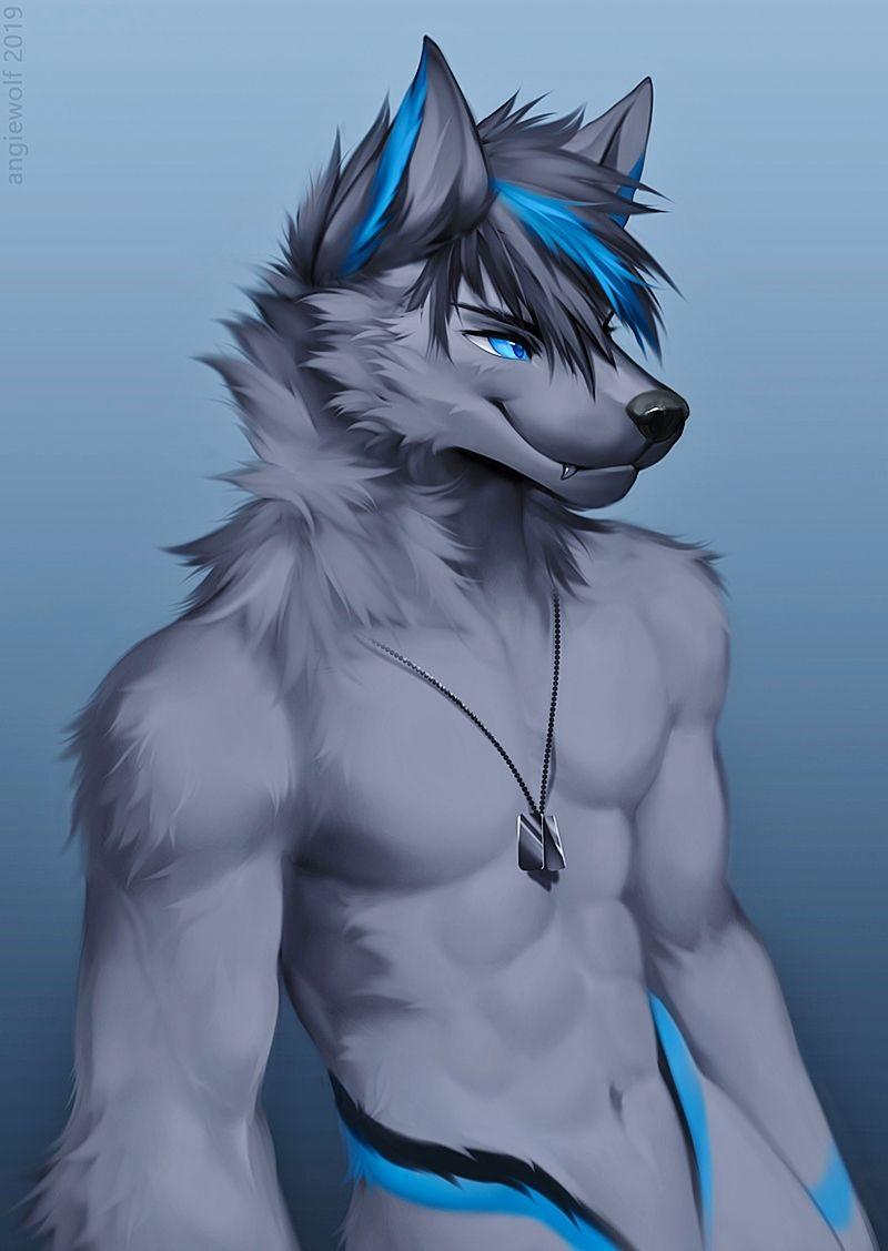 Photo of Blue Grey Wolf