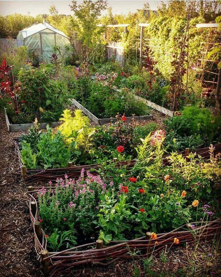 Pin By Karen Heyndrickx On Garden In 2020 Urban Garden Design Garden Design Urban Garden