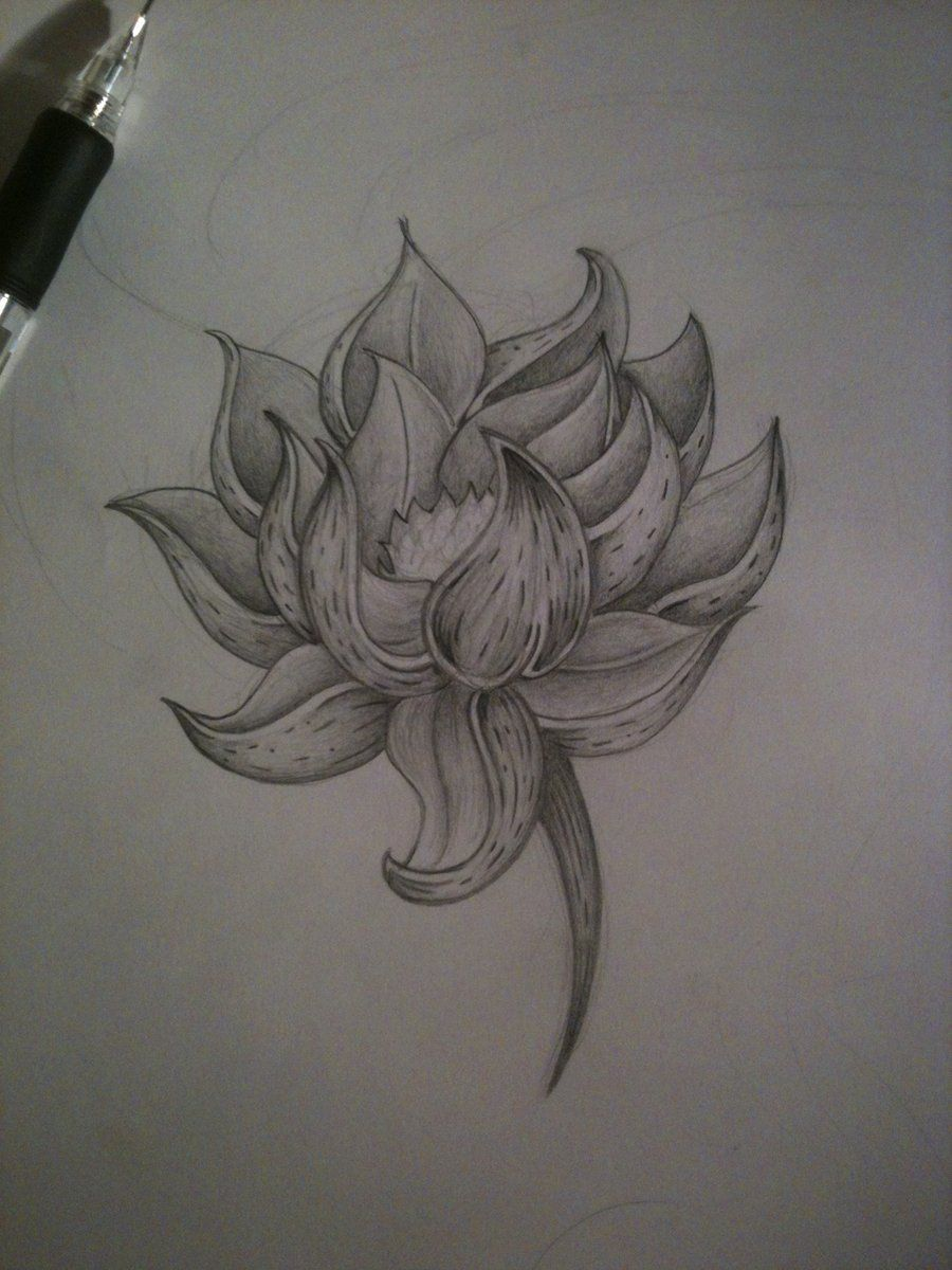 Pencil Shade Lotus Flower