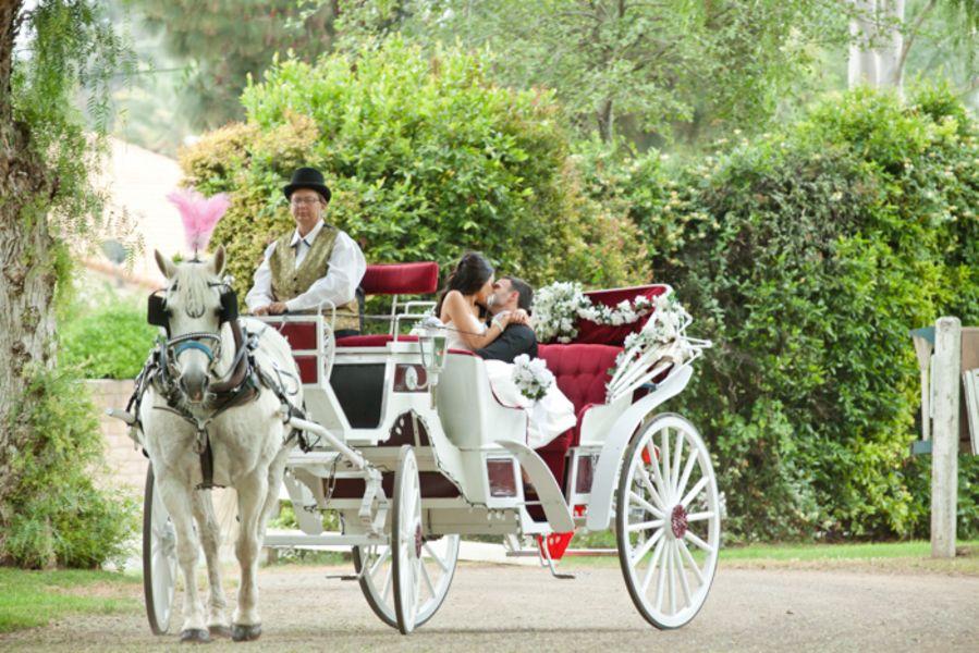 Elegant Equestrian Wedding