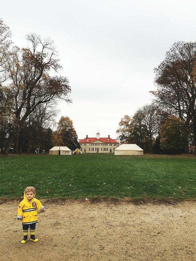 Things to do in DC: Visiting Mount Vernon with kids - A Girl Named PJ