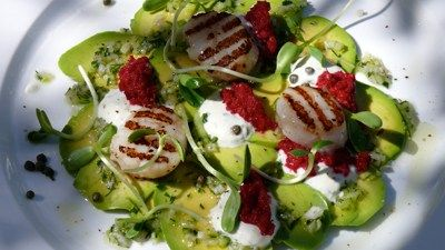 Avocado carpaccio with seared scallops beetroot horseradish and avocado carpaccio with seared scallops beetroot horseradish and crme fraiche recipe anna gare recipes forumfinder Image collections
