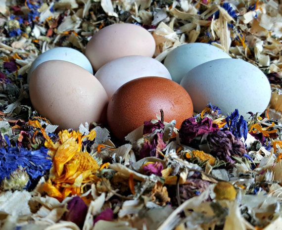 1/4 lb. 4 oz. Herbs for Hens Chicken Nesting Box by