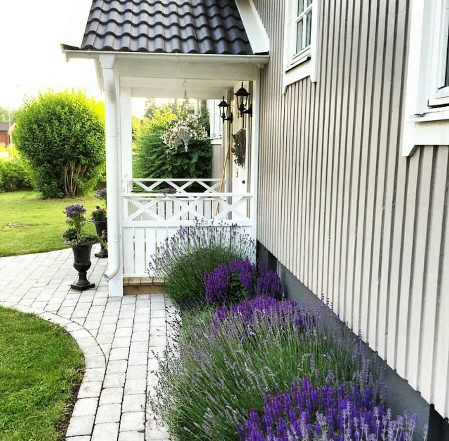 Pin by Chloe* on Lavender... | Pinterest | Landscaping ideas