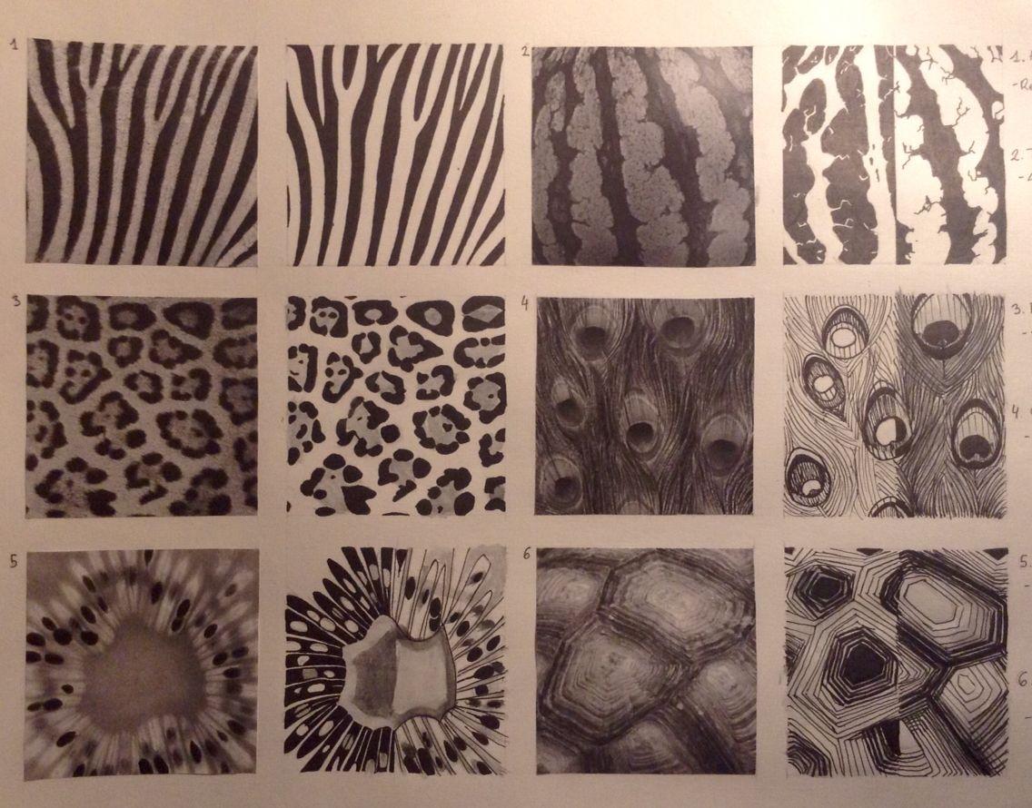 Texturas Naturales Texture Design Textures Patterns Animal Print Rug