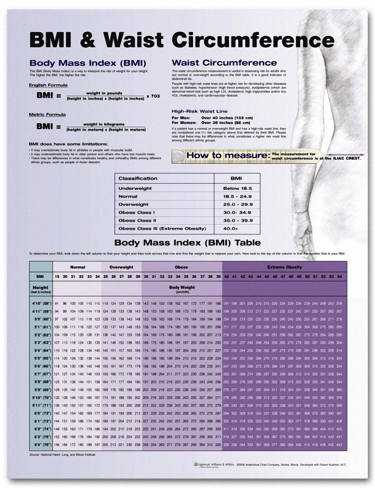 BMI And Waist Circumference Chart | Health & Fitness that I love ...