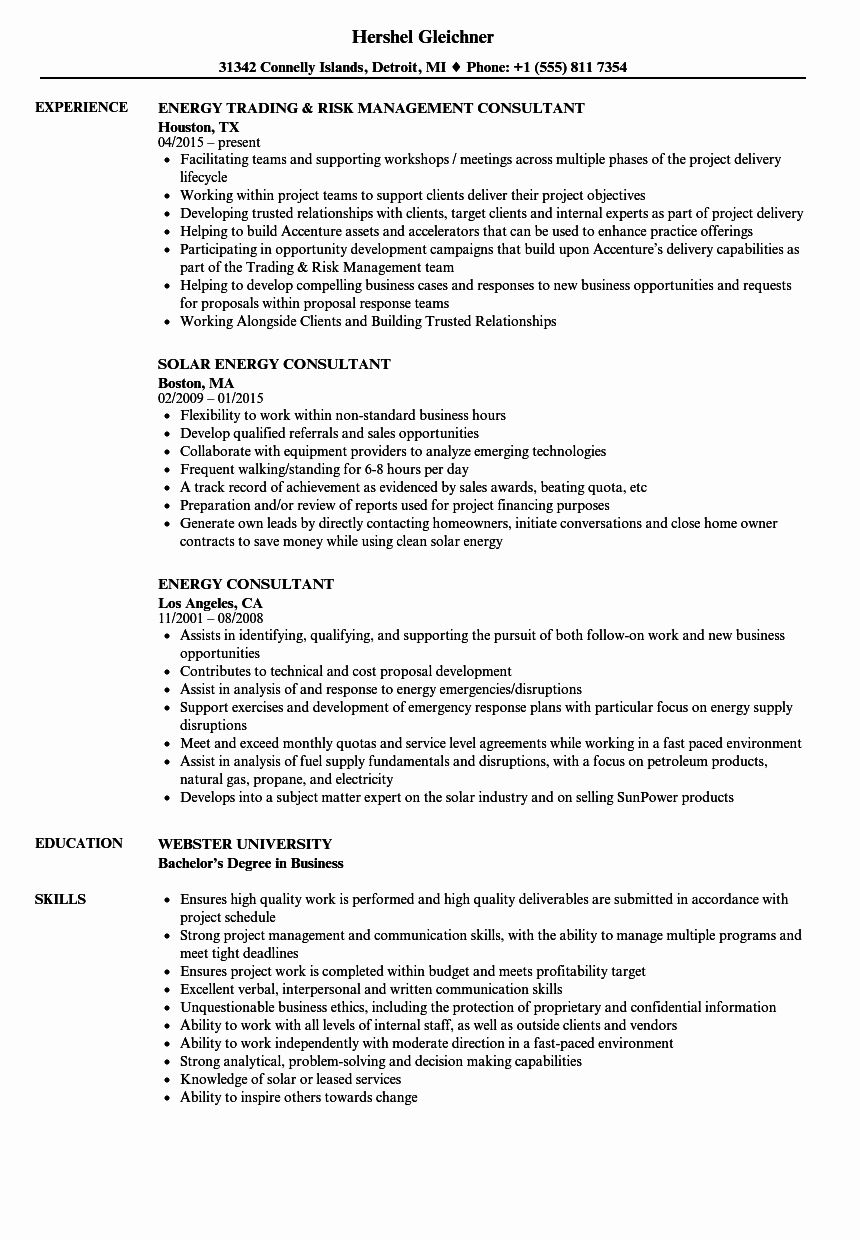 Independent Consultant Resume Example New Resume Examples Job Resume Examples Resume
