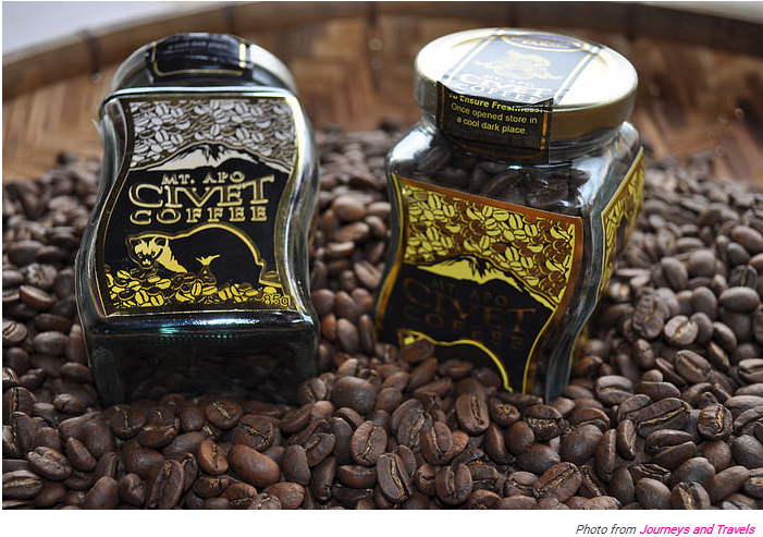 The World's Most Expensive Coffee Comes From Cat Poo But
